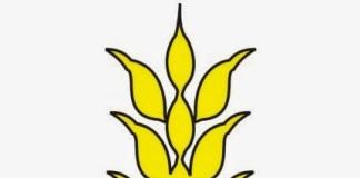Logo Nasyiatul 'Aisyiyah