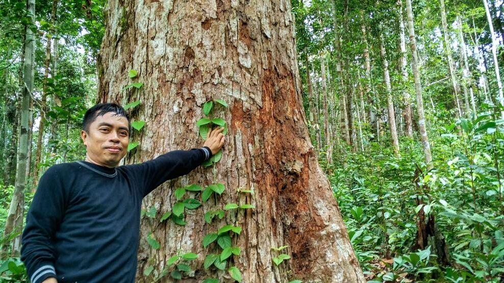 Drs. Bulkani, M.Pd, Rektor Universitas Muhammadiyah Palangkaraya, berada di Hutan Pendidikan Palangkaraya. Mahasiswa asing dan Indonesia belajar di hutan ini. Foto: Indra Nugraha